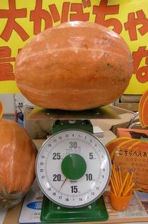 17.8kg.JPG