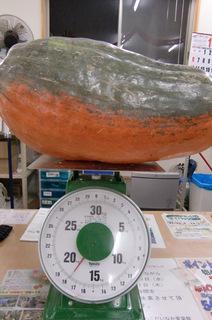 17.9kg.JPG